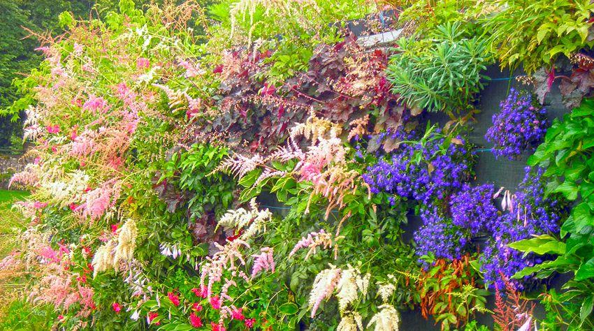 Paysage entretien cr ation jardin charente angoul me montbron for Entretien jardin angouleme